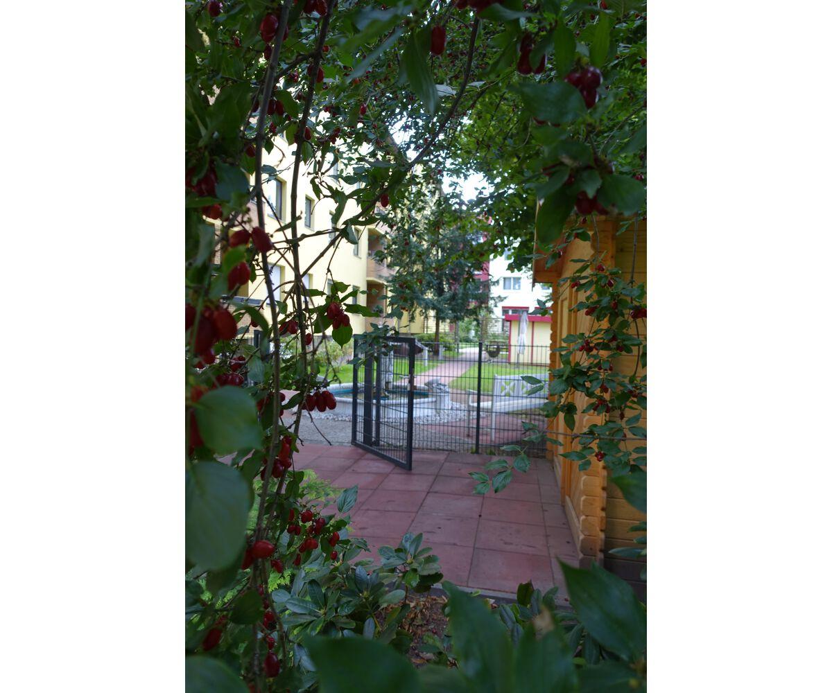 lwlw_Garten (4).jpg
